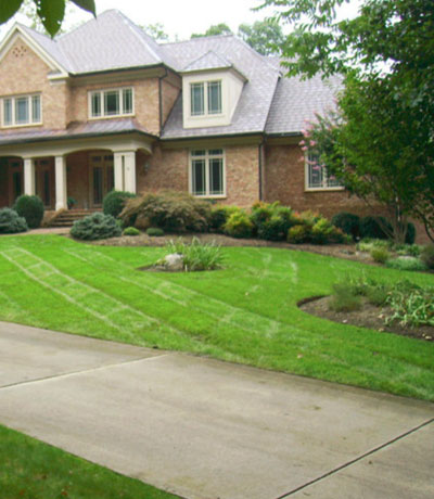 Looking Sharpe Landscapes - lawn maintenance
